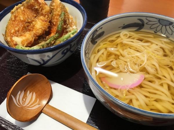 日本遊學體驗 | 新衫田 江之島 箱根 小田原 各種美食大匯集 @林飛比。玩美誌
